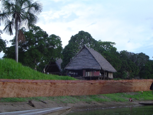 Amazon river hut