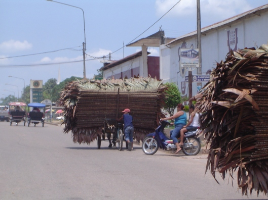 Pucallpa transportation (2)