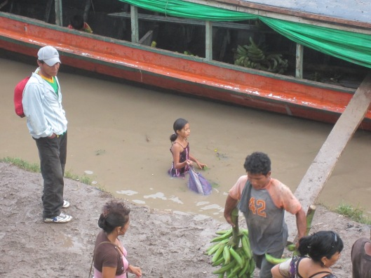 Dock retrieving bananas