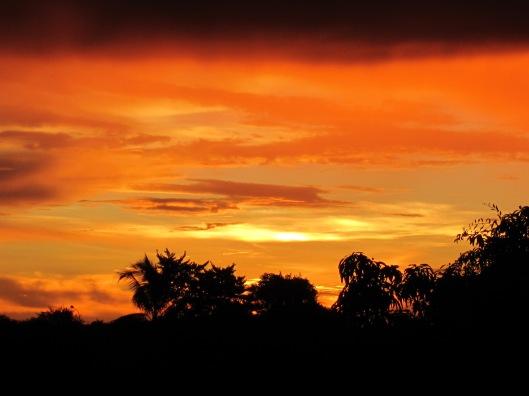 Amazon sunset 2